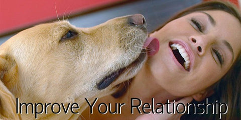 Your Relationship with your pet
