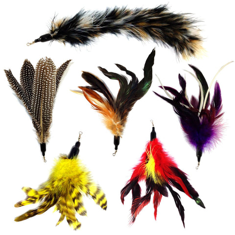 6 Piece Feather Replacement Pack