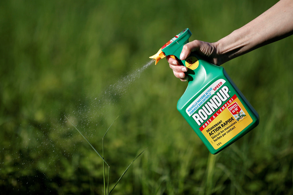 Berkeley Science Reviews Glyphosate and Cancer