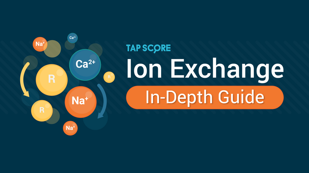 How Does Ion Exchange Work?