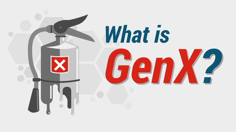 "GenX: The ""Regrettable Substitution"""