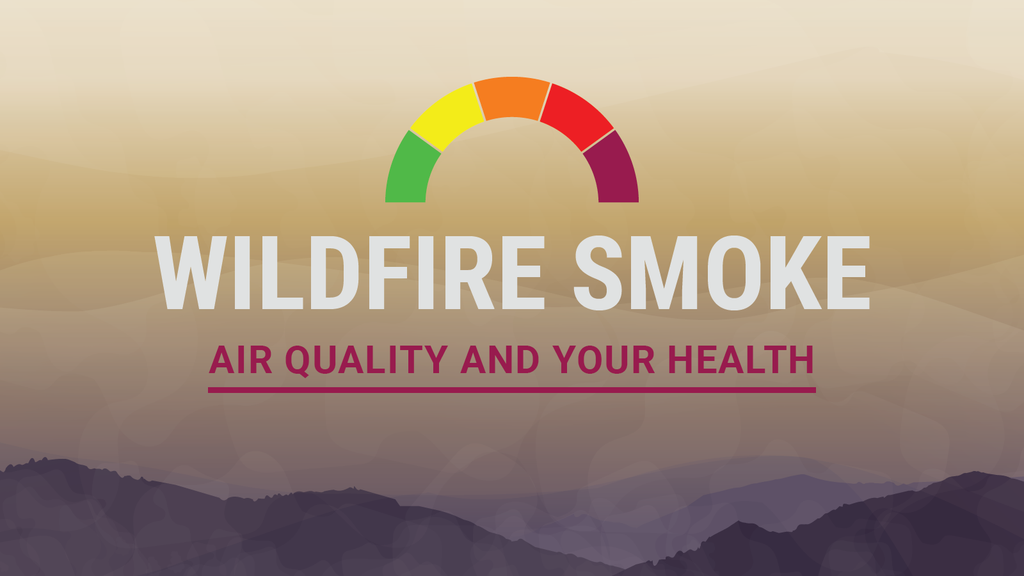 Wildfire Smoke, Air Quality and Your Health