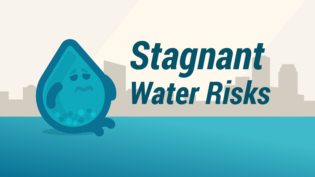 What Happens to Stagnant Water in a Vacant Building?