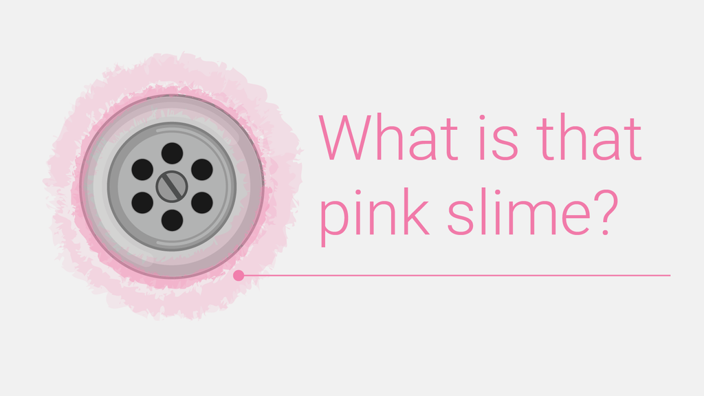 What is the Pink Slime in My Bathroom?