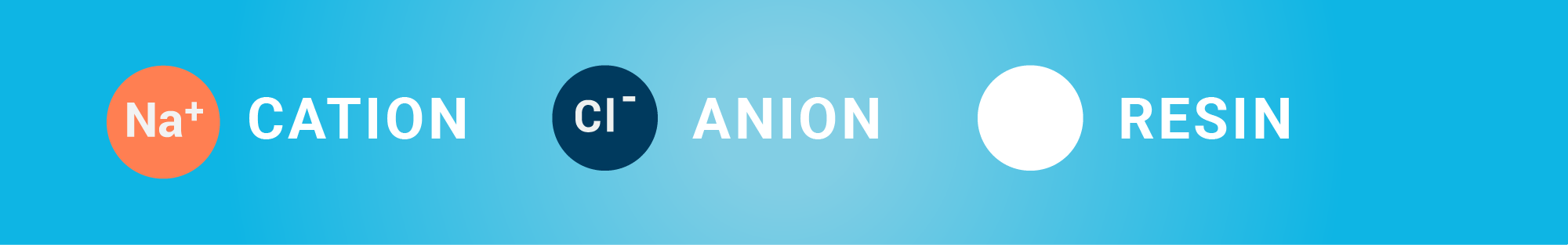 Cation versus Anion