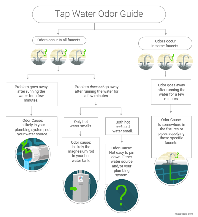 Stinky Water: Your Odor Guide | SimpleWater Tap Score
