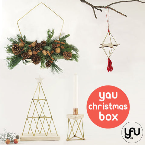 YaU Christmas BOX 1 craciun 2020 Elena Toader