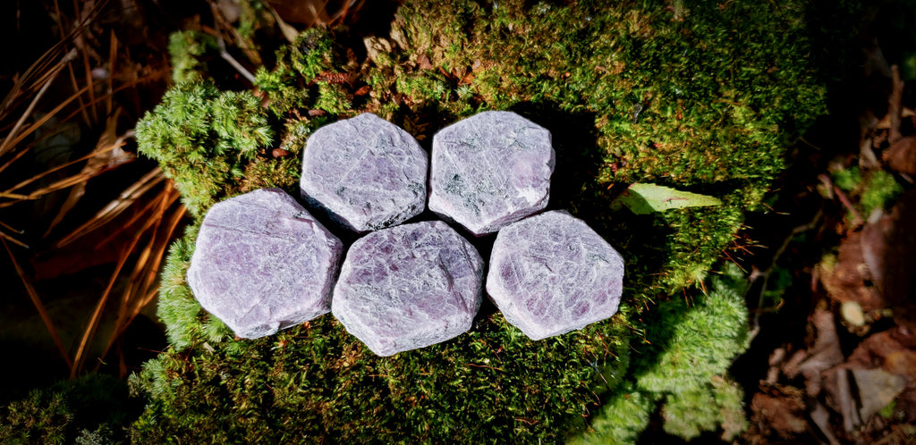 Raw Ruby Hexagons - Wild Witchery