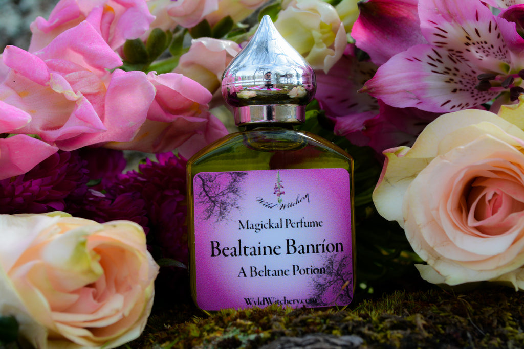 Bealtaine Banríon~A Beltane Potion - Wild Witchery