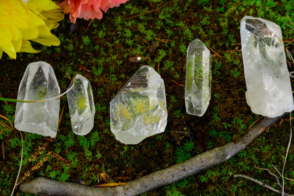 Clear Quartz Points - Wild Witchery