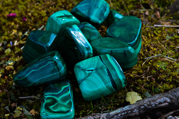Malachite~For Transformation, Healing & Growth - Wild Witchery