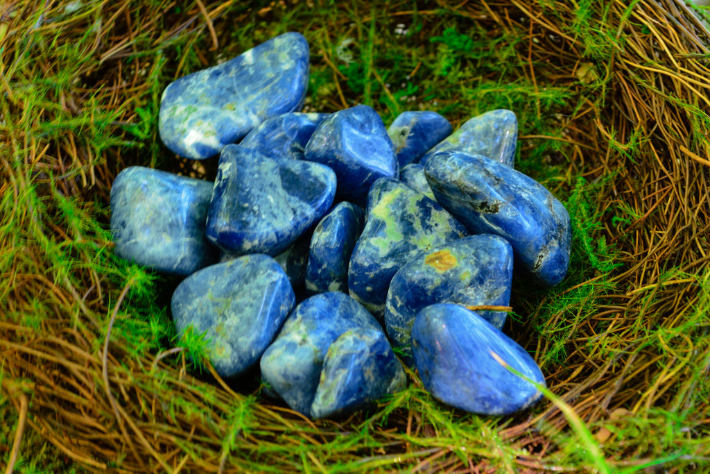 Sodalite ~For Fear & Anxiety Removal - Wild Witchery