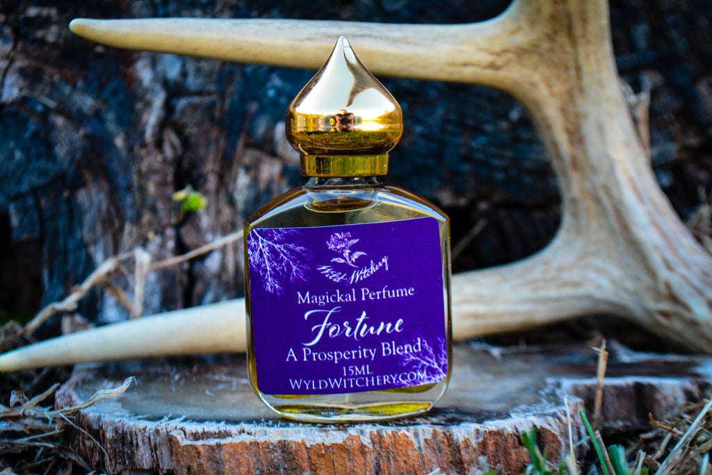 Fortune~ A Money Flow Potion - Wild Witchery