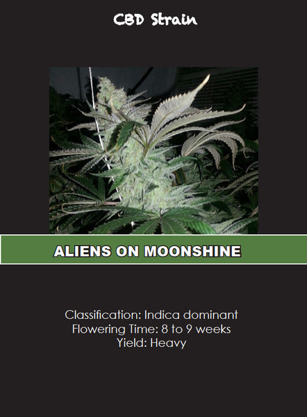 ALIEN ON MOONSHINE CLONE