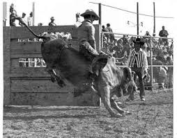 Bull Riding Equipment