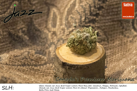 Super Lemon Haze -  Jazz Bud Sativa - Jazz Bud -Canada's Premium Brand of Online Marijuana - 1