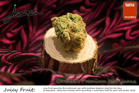 Juicy Fruit -  Jazz Bud Sativa - Jazz Bud -Canada's Premium Brand of Online Marijuana - 1