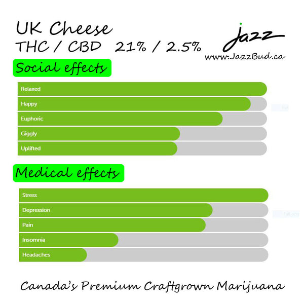 UK Cheese-  Jazz Bud Hybrid - Jazz Bud -Canada's Premium Brand of Online Marijuana - 3