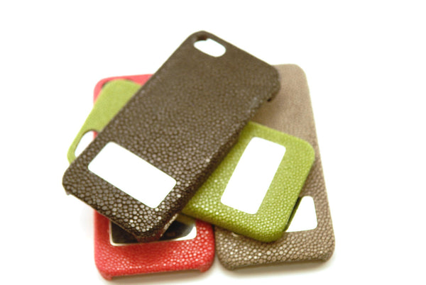 Stingray and Silver iPhone 5 Case
