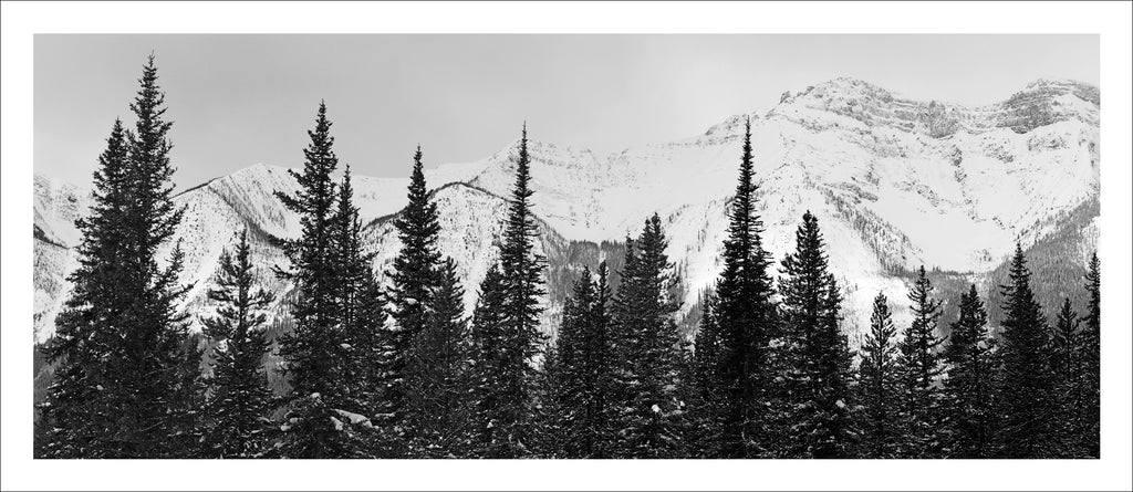 Ice Fields Parkway # 9, Alberta, Canada, 2011 | © 2007-2016 Richard Johnson Photography Inc. | richardjohnsongallery.com