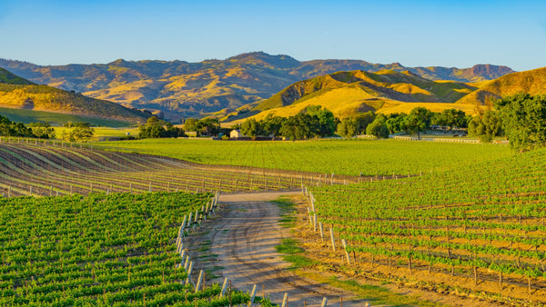How to Spend a Weekend in California's Santa Ynez Valley