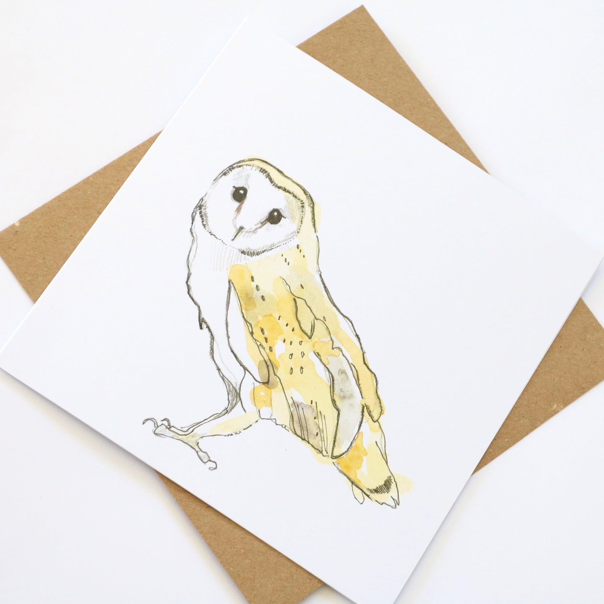 Barn owl square card