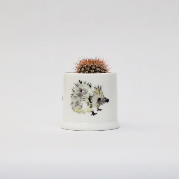 Hedgehog candle pot
