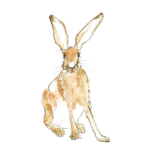 Harry Hare square card