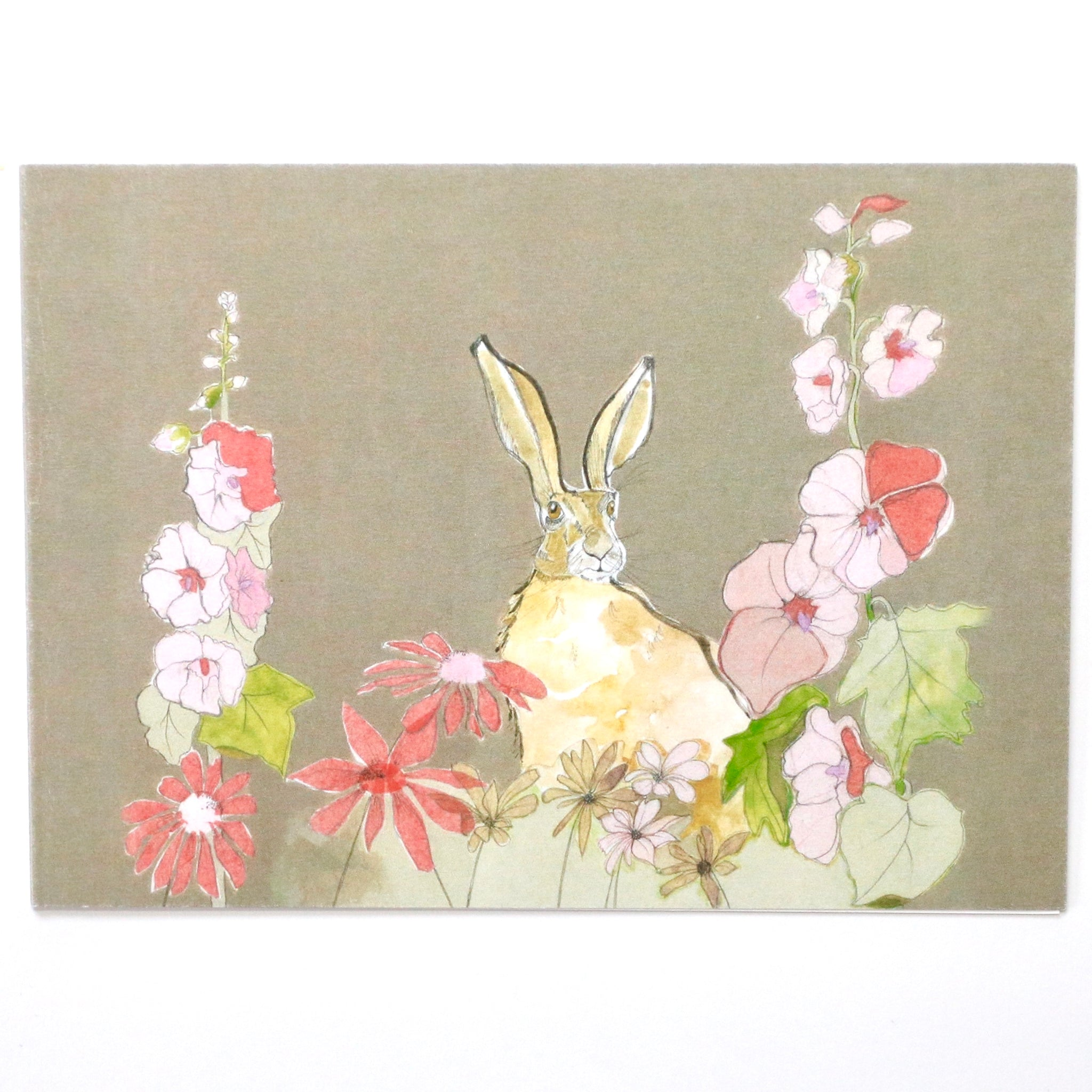 Holly Hare wild card