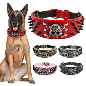 "Skull 2"" Wide Spiked Studded Leather Dog Collar Pet Accessories"
