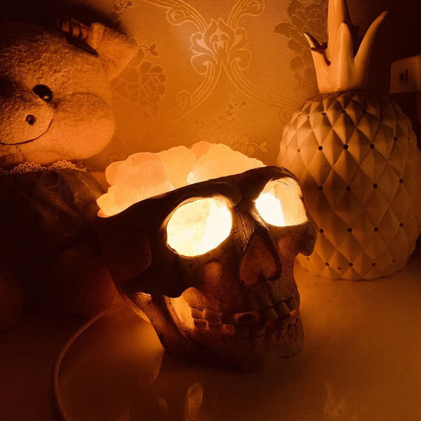 Skull Himalayan Crystal Salt Lamp USB Dimmable Night Light - Skull Clothing and Accessories Skull only Merchandise