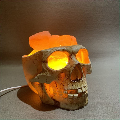 Skull Himalayan Crystal Salt Lamp USB Dimmable Night Light