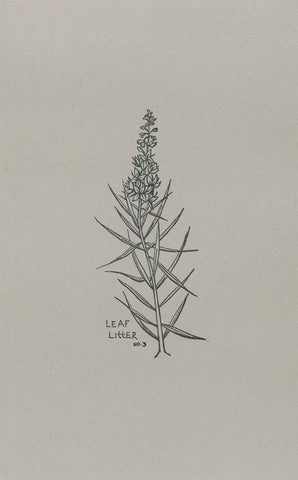 Leaf Litter no.3 by Signal Fire