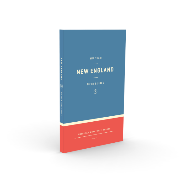 New England Field Guide - Mick & Kip