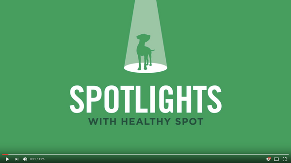 Video Spotlight on Boxiecat with Healthy Spot