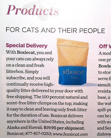 Boxiecat Featured In Cat Fancy Magazine!
