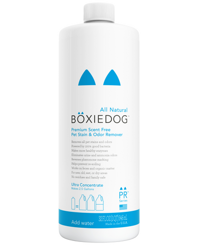 Boxiedog scent-free stain & odor remover 32 oz ultra concentrate bottle front