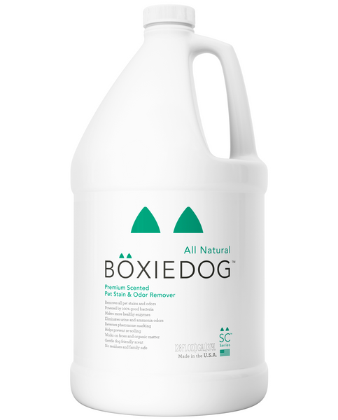 Boxiedog gently scented stain & odor remover gallon bottle front