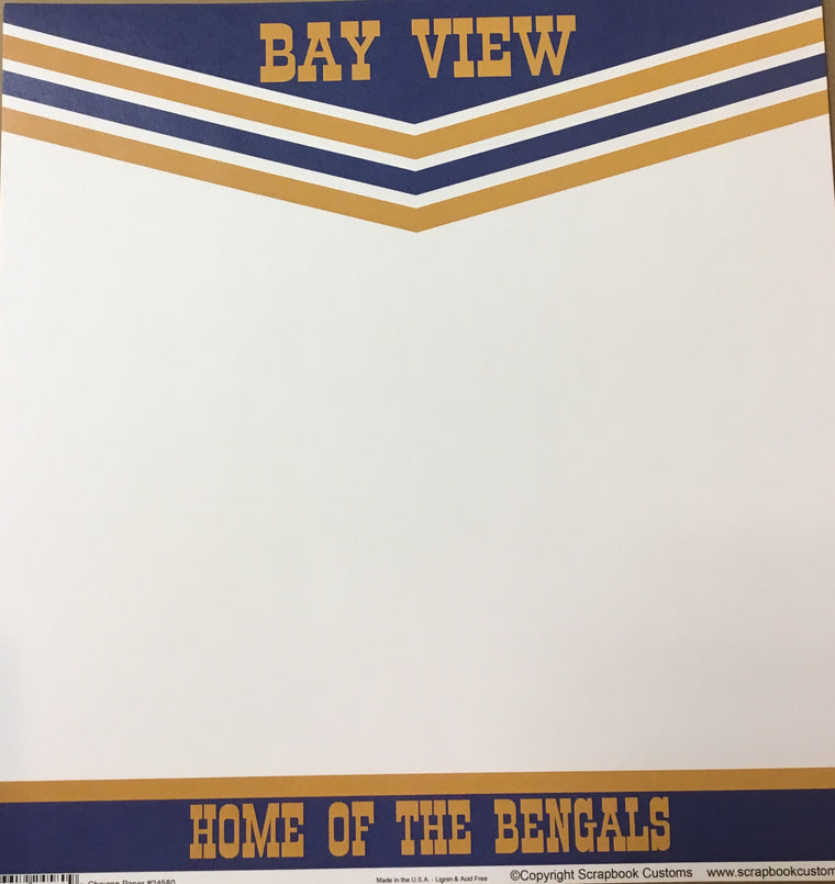 Bay view Academy chevron paper