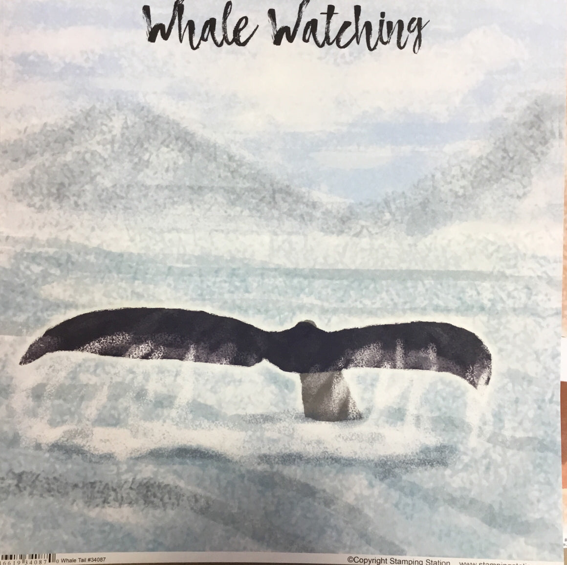 Whale Watching 12x12 single sheet