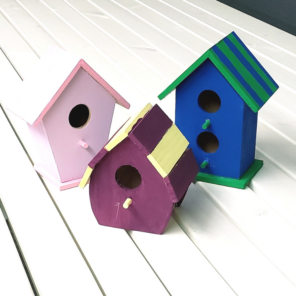 Bird House Painting Craft Kit