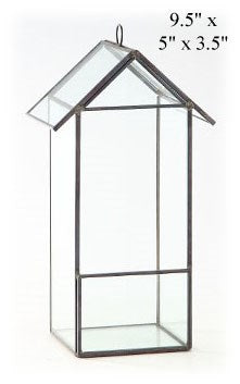 Tall Glass House Terrarium
