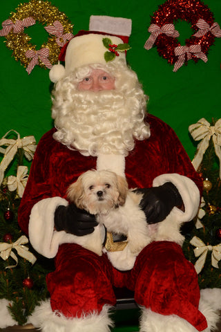Santa is coming to Happy Tails!