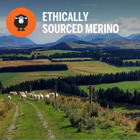 Ethically Sourced Merino