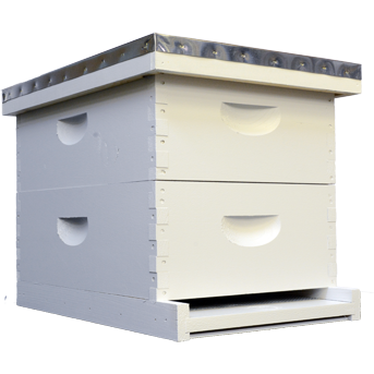 Painted/Assembled Langstroth Hive (Medium Boxes)