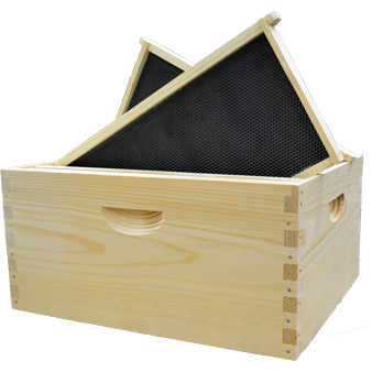 Assembled Pine Langstroth Box with SuperFrames