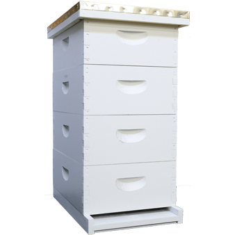 Advanced Painted / Assembled Langstroth Hive