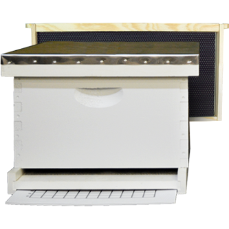 Painted/Assembled Langstroth Hive (Deep Box)
