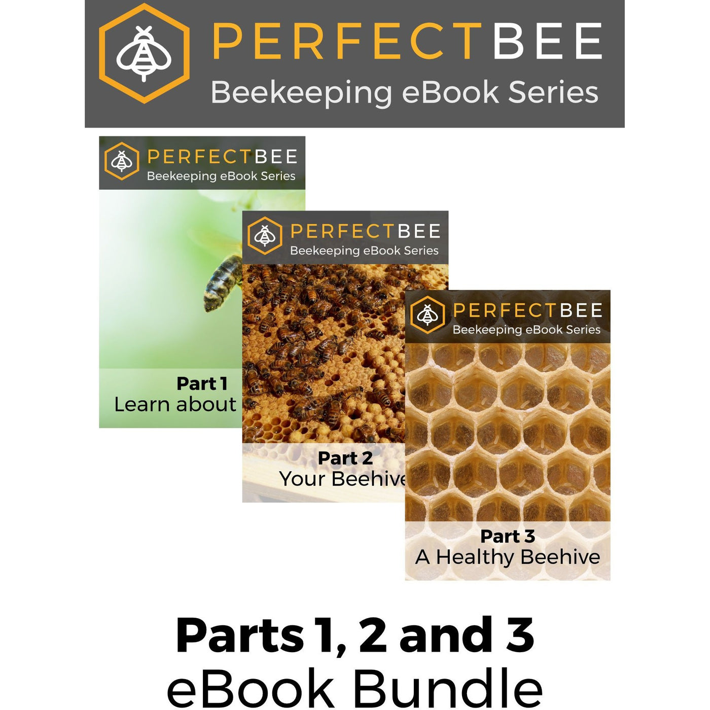 Learn About Bees eBook