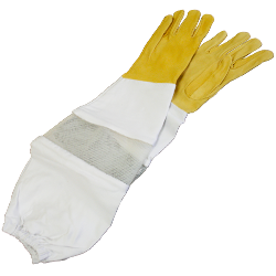 Women's Ventilated Goatskin Gloves